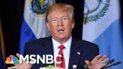 Trump: 'Absolutely No Pressure' Put On Ukraine To Investigate Biden And Son | Hallie Jackson | MSNBC 5