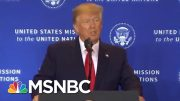 GOP Strategist: Force Republicans To Take A Hard Vote On Impeachment | The Last Word | MSNBC 3