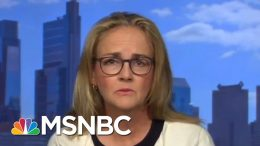 Pentagon Moving Military Funds To Build Trump's Wall 'Ineffective' And 'Stupid' | MTP Daily | MSNBC 5