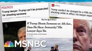 Trump Lawyers Argue His Crimes Can't Be Investigated, Prosecuted | Rachel Maddow | MSNBC 3