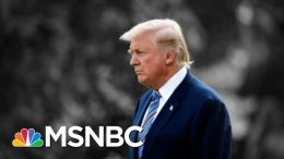 NYT: Trump Suggested U.S Troops Could Shoot Immigrants In The Legs At Border | The 11th Hour | MSNBC 9