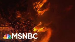 California Governor Declares Statewide Emergency Due To Wildfires | MSNBC 1