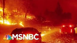 How Wildfires And Climate Change Are Connected | Velshi & Ruhle | MSNBC 6