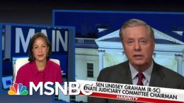 Trump Ally Lindsey Graham Responds To Obama Aide Dubbing Him A 'Piece Of Sh**' | MSNBC 5