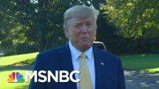 Former Ambassador Excoriates Corruption Of Trump Acolytes | Rachel Maddow | MSNBC 3