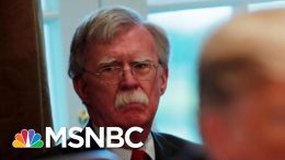 Susan Rice On President Donald Trump's Phone Call To Ukraine | All In | MSNBC 6