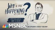 Political Tribalism With Amy Chua | Why Is This Happening? - Ep 7 | MSNBC 5