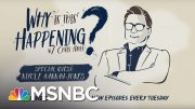 School Segregation In 2018 with Nikole Hannah-Jones | Why Is This Happening - Ep 14 | MSNBC 5