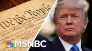Trump Says The 'Phony' Constitution 'Doesn't Matter' Because He's 'Rich' | MSNBC 2