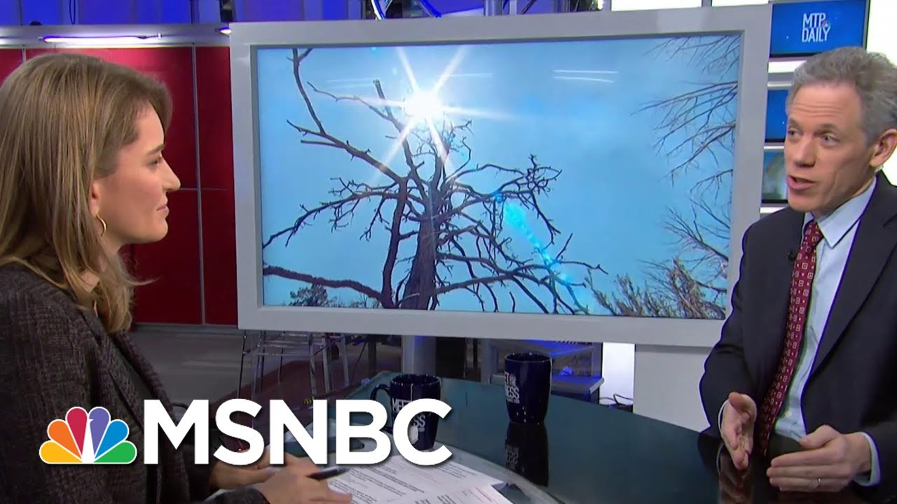 U.N. Calls Climate Outlook 'Bleak' In New Report | MTP Daily | MSNBC 9