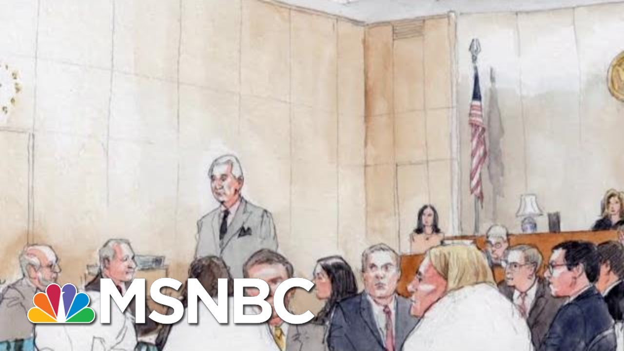 Why Roger Stone Abruptly Left His Criminal Trial | The Beat With Ari Melber | MSNBC 9
