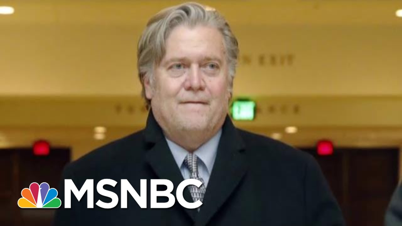 Steve Bannon: Roger Stone Was 'Access Point' To WikiLeaks | The Last Word | MSNBC 8