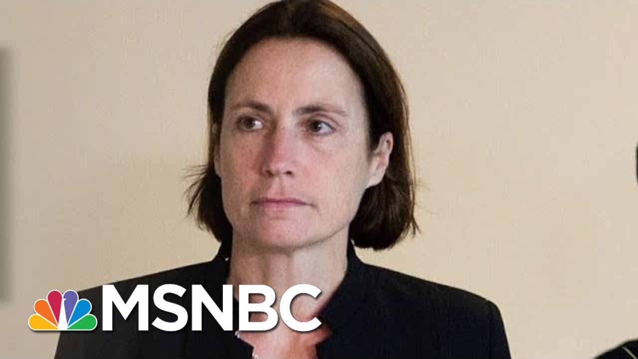 Witness Paints Trump Scheme, Russian Threat In Vivid Detail | Rachel Maddow | MSNBC 9