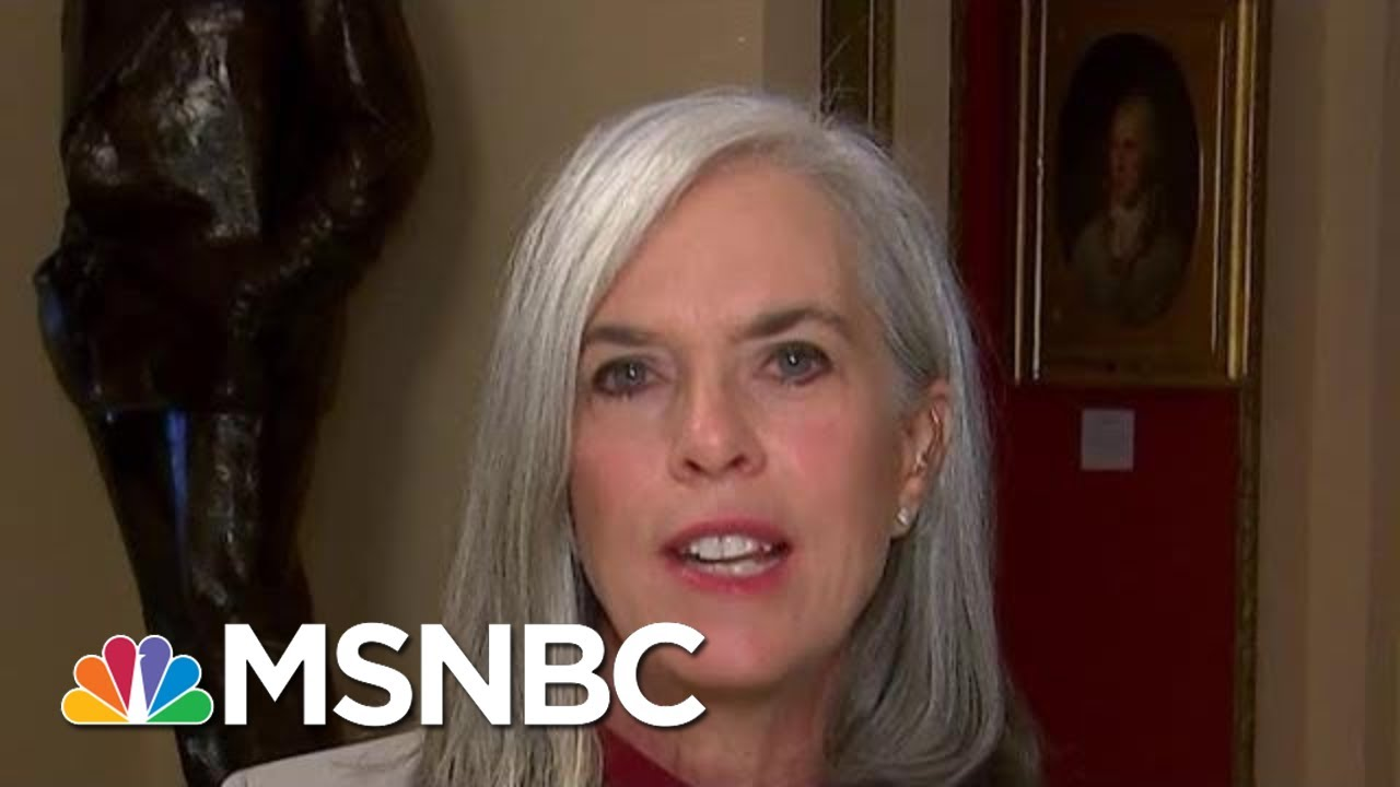 'The Facts We've Heard Are Alarming,' Says House Dem | Morning Joe | MSNBC 4