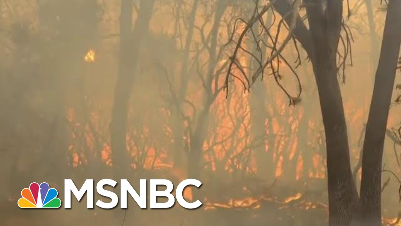 What Changes Need To Happen Now For Climate Change | Velshi & Ruhle | MSNBC 12