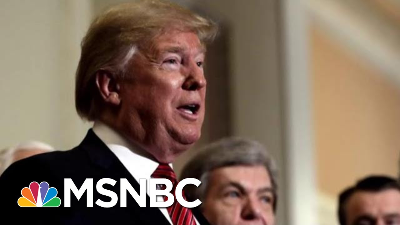Neal Katyal Weighs In On Potential Articles Of Impeachment Against President | The Last Word | MSNBC 5